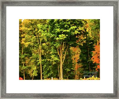 Autumn At Olana 1 Framed Print