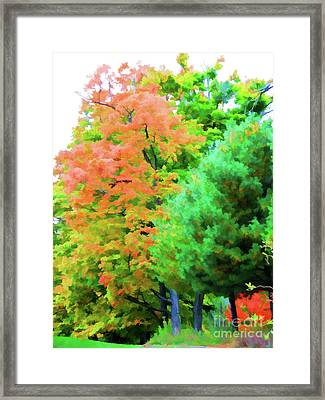 Autumn At Olana 3 Framed Print