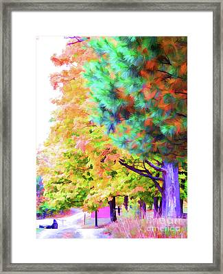 Autumn At Olana 4 Framed Print