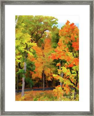 Autumn At Olana 7 Framed Print