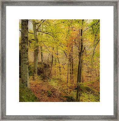 Autumn At Rim Rock Framed Print by Sandy Keeton