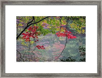 Autumn At Spirit Springs Framed Print