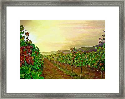 Autumn At Steenberg Framed Print by Michael Durst