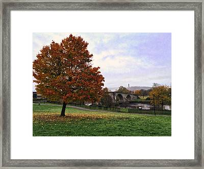 Autumn At Stirling Bridge Framed Print