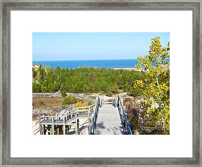 Autumn At The Dunes Framed Print by Gary Richards