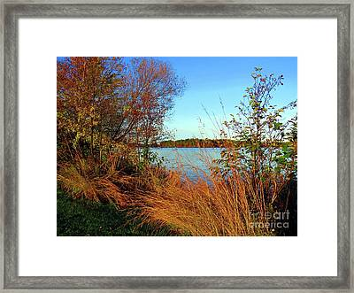 Autumn At The Lake Framed Print by Desiree Paquette