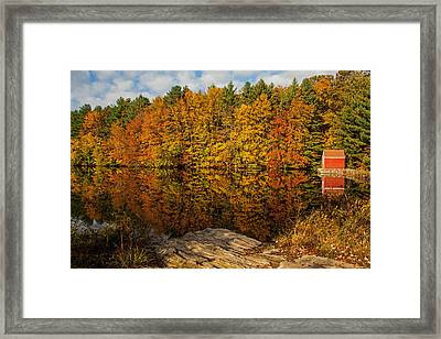 Autumn At The Lake Framed Print by Karol Livote