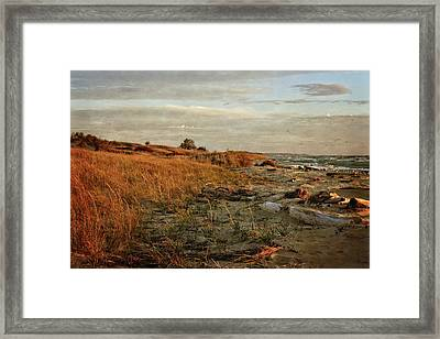 Framed Print featuring the photograph Autumn At The Mouth Of The Big Sable by Michelle Calkins