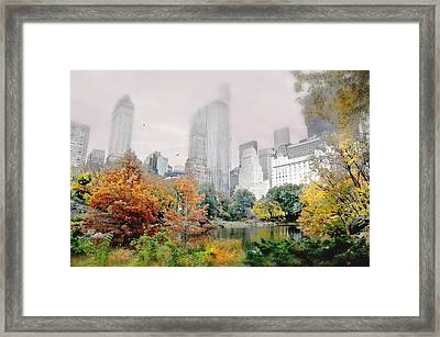 Autumn At The Pond Framed Print by Diana Angstadt