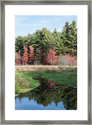 Autumn At The River Framed Print