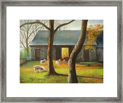 Autumn At The Sheep Barn Framed Print
