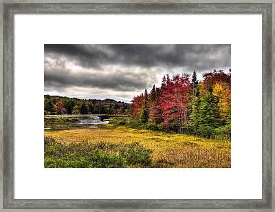 Autumn At The Tobie Trail Bridge Framed Print by David Patterson