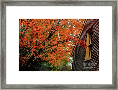 Autumn At The Window Framed Print