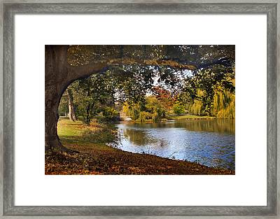 Autumn At Woodlawn Framed Print by Jessica Jenney