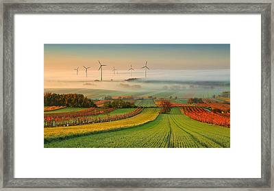 Autumn Atmosphere In Vineyards Framed Print by Matej Kovac