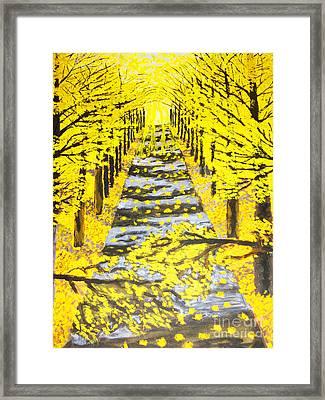 Autumn Avenue Framed Print