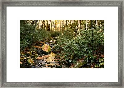Autumn Babble Framed Print by Matt Tilghman