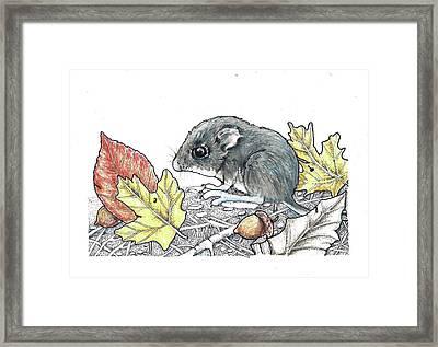 Autumn Baby Framed Print