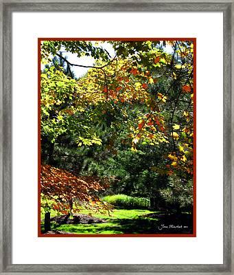 Framed Print featuring the photograph Autumn Backyard by Joan  Minchak