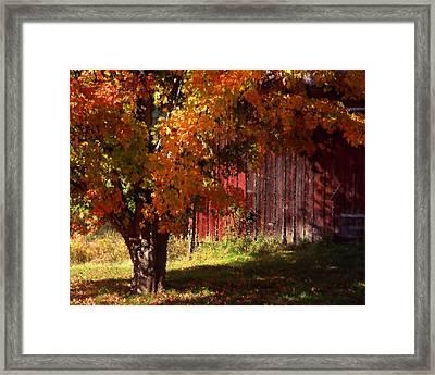 Autumn Barn Framed Print by Barry Shaffer