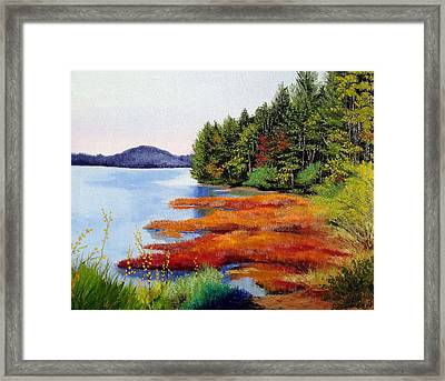 Autumn Bay Marsh Framed Print by Laura Tasheiko