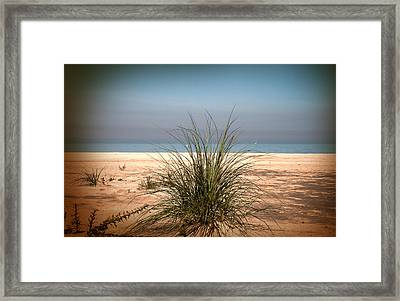Autumn Beach Framed Print