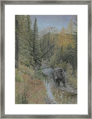 Autumn Bear Romp Framed Print