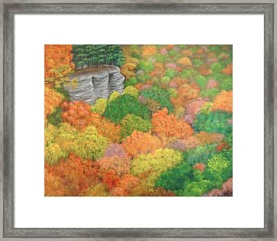 Autumn Beauty Framed Print by Hollie Leffel