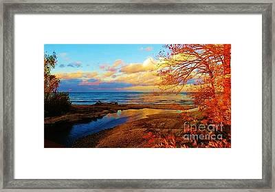 Autumn Beauty Lake Ontario Ny Framed Print