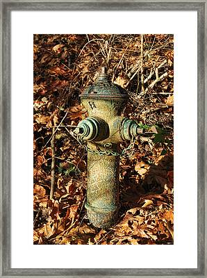 Autumn Beauty Framed Print by Sergey and Svetlana Nassyrov