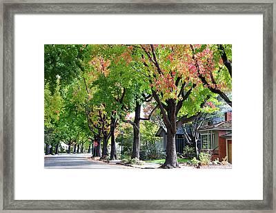Autumn Begins Framed Print by Sheila Fitzgerald