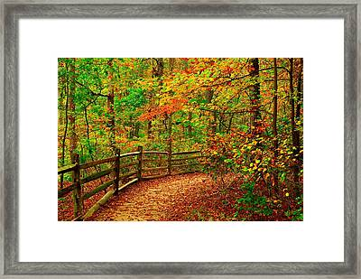 Autumn Bend - Allaire State Park Framed Print by Angie Tirado