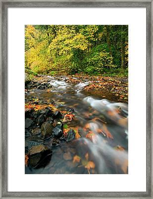 Autumn Beneath Framed Print by Mike  Dawson