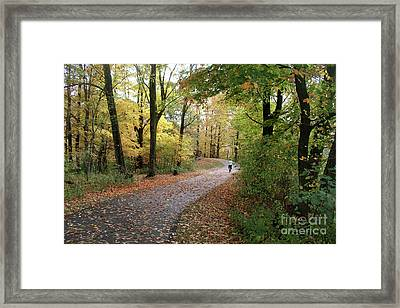 Framed Print featuring the photograph Autumn Bicycling by Felipe Adan Lerma