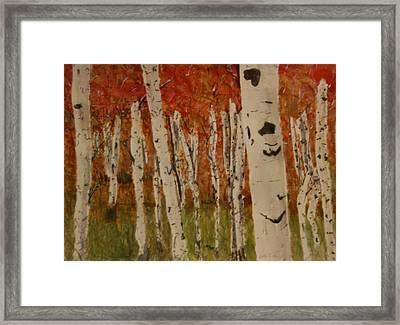 Autumn Birch Forest Framed Print by Betty-Anne McDonald