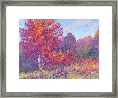 Autumn Blaze Framed Print by Michael Camp