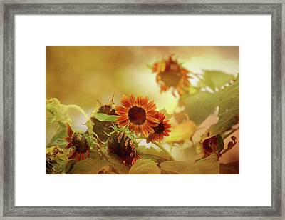 Autumn Blessings Framed Print by Theresa Campbell