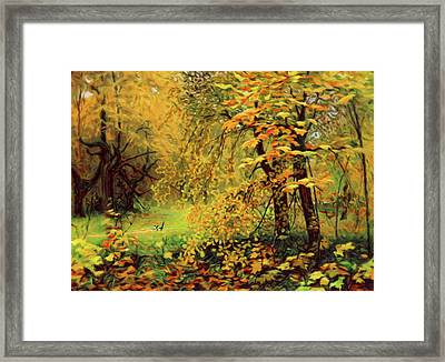Autumn Bliss Of Color Framed Print