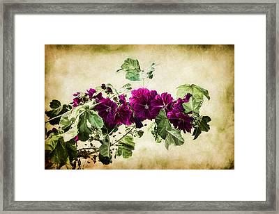 Autumn Blooms Paintography Framed Print by Chris Lord