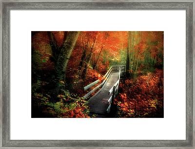 Autumn Boardwalk Framed Print by Tara Turner