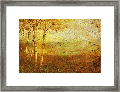 Autumn Breeze Framed Print by Ken Walker