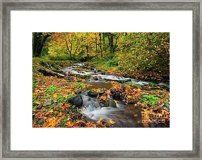 Autumn Bridge Framed Print by Mike Dawson