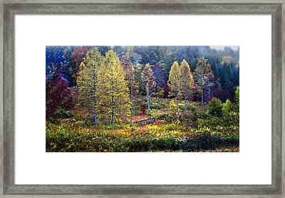Autumn Bridge Under Color Framed Print by Debra and Dave Vanderlaan