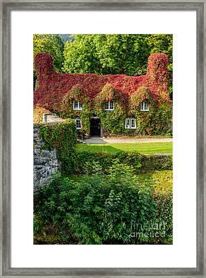 Autumn Brilliance Framed Print by Adrian Evans