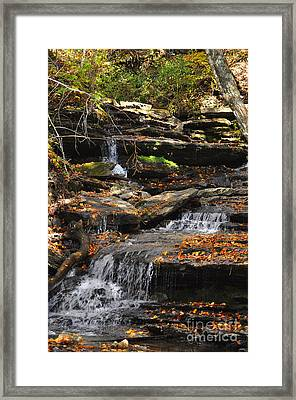 Framed Print featuring the photograph Autumn Brook by Diane E Berry