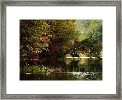 Autumn By The Lake Framed Print by Scott Fracasso