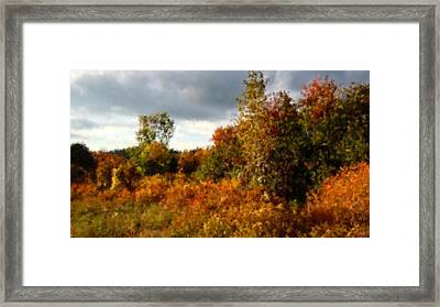 Autumn Calico Along The Arroyo El Valle New Mexico Framed Print by Anastasia Savage Ealy