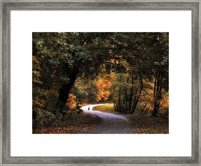 Autumn Canopy Framed Print by Jessica Jenney