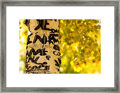 Autumn Carvings Framed Print by James BO  Insogna
