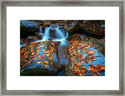 Autumn Cascade In The Smokies Framed Print